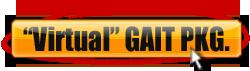 Virtual On-line Gait Analysis Pkg.